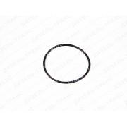 Кольцо уплотнительное 33.1111196