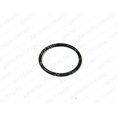 Кольцо уплотнительное 2531112081 ЯМЗ-175
