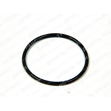 Кольцо уплотнительное 2531112181 (Балаково)