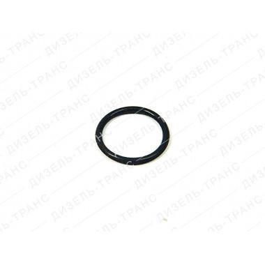 Кольцо уплотнительное 2531113073 (Балаково)